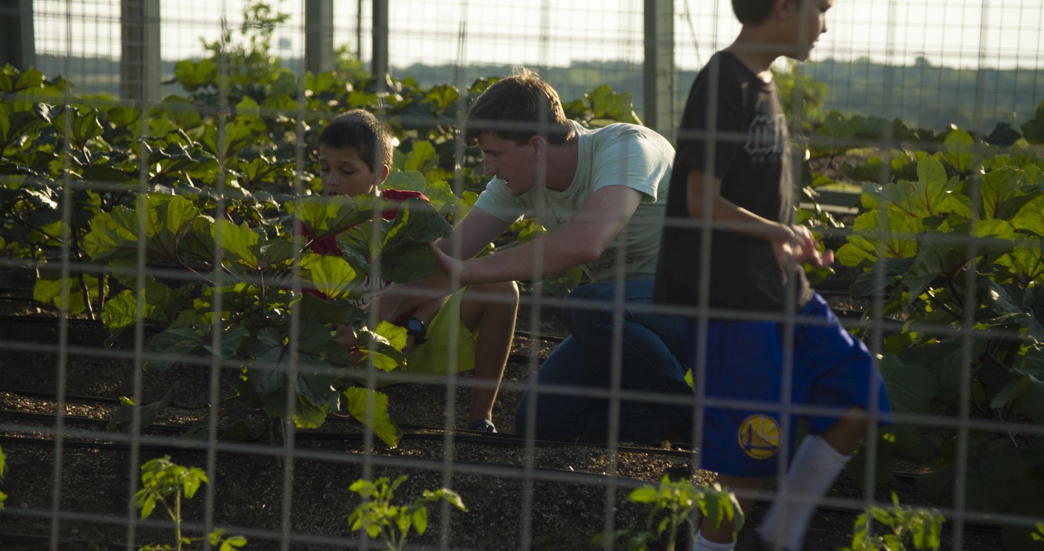 Whisper Valley Organic Garden and Farm Program