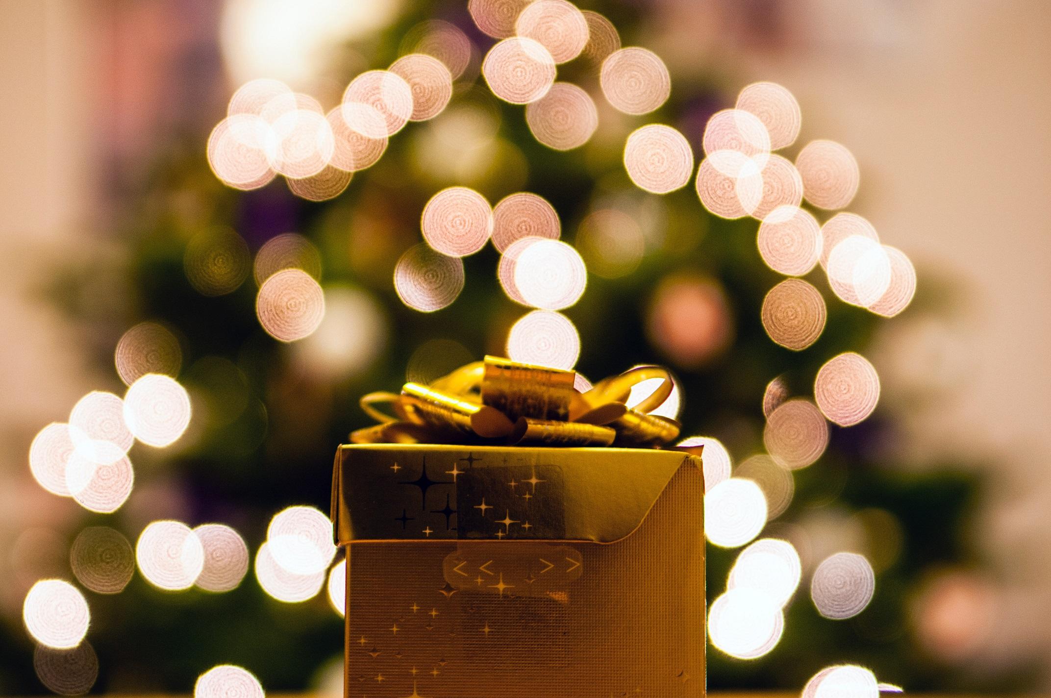 eco-friendly holiday gift ideas