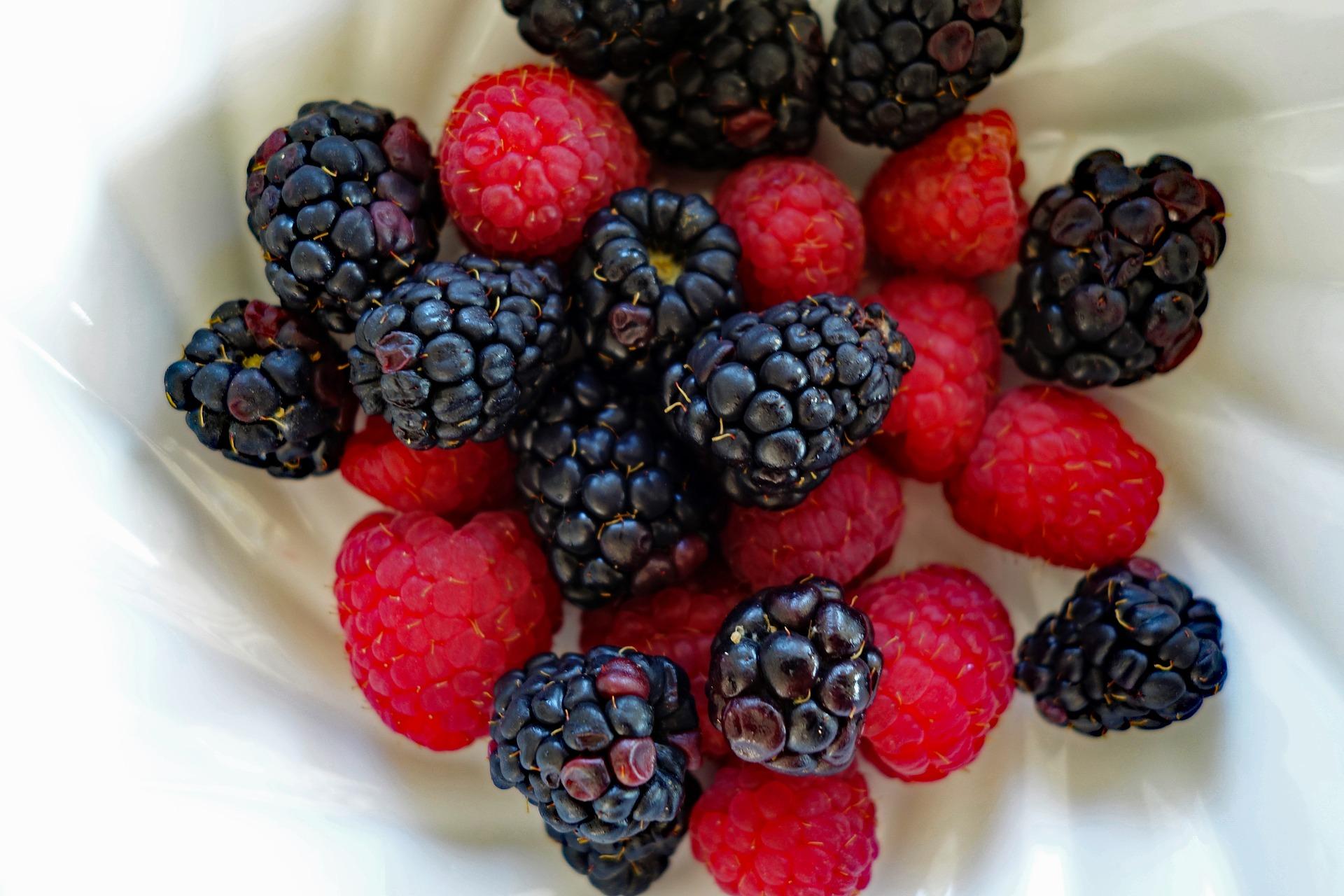 raspberry-3390342_1920