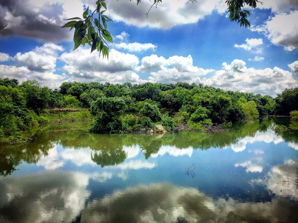 East Austin Parks Roy G Guerrero Colorado River Park